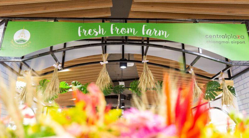 """Fresh From Farm สดจากต้น ส่งตรงจากดอย"" วันที่ 22-26 ก.ค. 63 ณ ศูนย์การค้าเซ็นทรัล พลาซา เชียงใหม่ แอร์พอร์ต"
